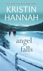 Angel Falls book