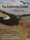 The California Condor A Story Of Hope