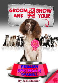 Groom and Show Your English Springer Spaniel