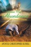 Access The Abundance