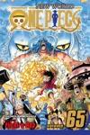 One Piece Vol 65