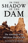 In The Shadow Of The Dam