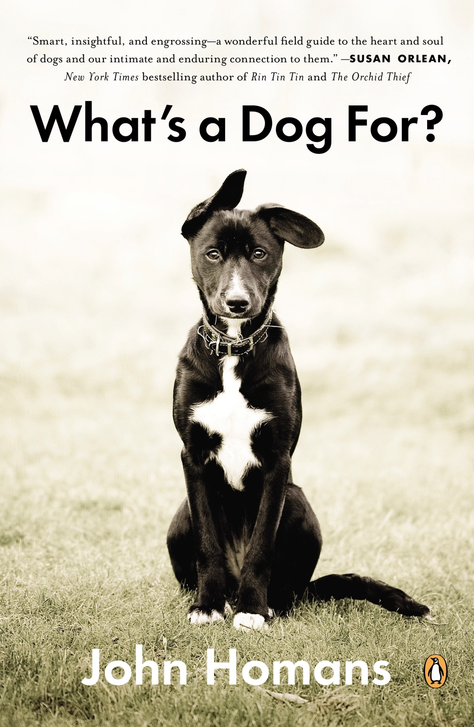 ‎What's a Dog For?