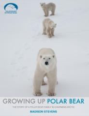 Growing Up Polar Bear