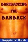 Barebacking The Barback Bisexual MMF Menage