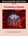 Circulatory System Enhanced Edition