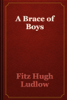 Fitz Hugh Ludlow - A Brace of Boys artwork