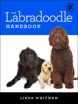 The Labradoodle Handbook - Linda Whitwam book