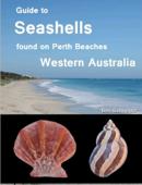 Guide to Seashells Found on Perth Beaches, Western Australia