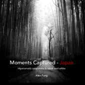 Moments Captured - Japan