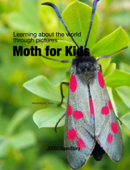 Moth for Kids