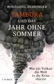 Tambora und das Jahr ohne Sommer