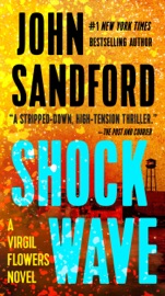 Shock Wave PDF Download