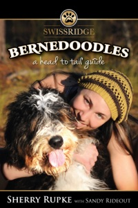 Bernedoodles: A Head to Tail Guide Book Cover