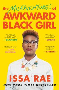 The Misadventures of Awkward Black Girl Summary