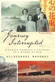Journey Interrupted book