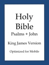 The Holy Bible King James Version Lite
