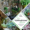 Mes Terrariums Dco