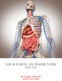 Your Voice: an Inside View (part 1)
