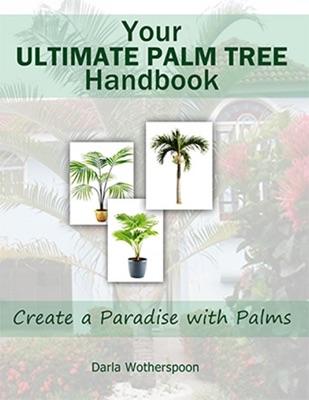 Your Ultimate Palm Tree Handbook