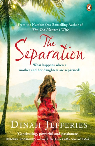 Dinah Jefferies - The Separation