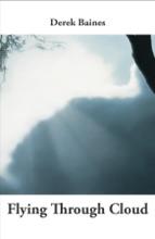 Flying Through Cloud