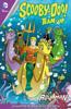 Sholly Fisch & Dario Brizuela - Scooby-Doo Team-Up (2013-2019) #27  artwork