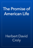 Herbert David Croly - The Promise of American Life artwork