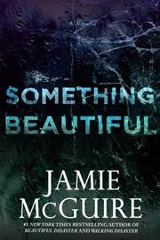 Something Beautiful: A Novella PDF Download