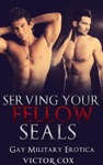 Serving Your Fellow SEALs Gay Military Erotica