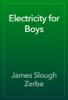 James Slough Zerbe - Electricity for Boys artwork