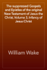 William Wake - The suppressed Gospels and Epistles of the original New Testament of Jesus the Christ, Volume 3, Infancy of Jesus Christ artwork