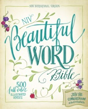 Download and Read Online NIV, Beautiful Word Bible