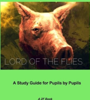 2F English Newbridge College - Lord of the Flies: A Pupil's Guide artwork