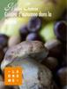 Mir Photo - Cuisine d'automne dans la Drôme artwork
