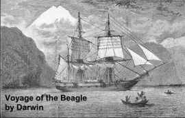THE VOYAGE OF THE BEAGLE, OR A NATURALISTS VOYAGE ROUND THE WORLD (ILLUSTRATED)