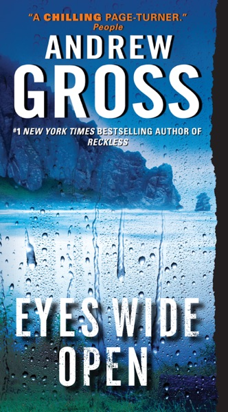 Eyes Wide Open - Andrew Gross book cover