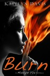 Burn Midnight Fire Series Book Five