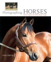 Photographing Horses