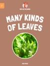 Leveled Reading Many Kinds Of Leaves