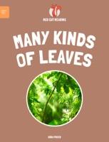 Leveled Reading: Many Kinds of Leaves
