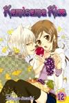 Kamisama Kiss Vol 12