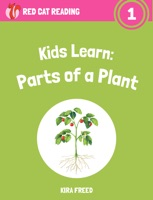 Kids Learn: Parts of a Plant