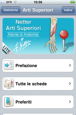 Netter Flashcards Arti Superiori Lite By Edra Lswr Spa