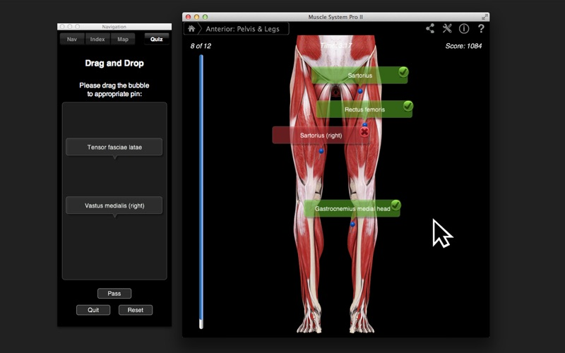 Muscle System Pro III APK for Android - Download Free [Latest