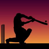 Little Master Cricket