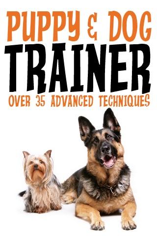 Puppy & Dog Trainer