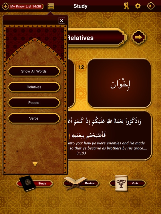 Quranic Words Lite for iPad -- Understand the Arabic Qur'an