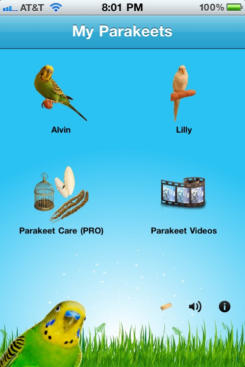 Parakeets screenshot-3