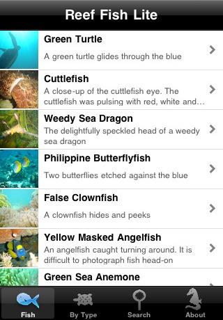 Reef Fish Lite